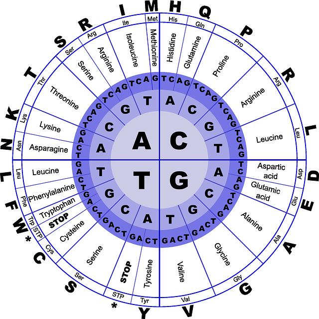 Amino Acids Class